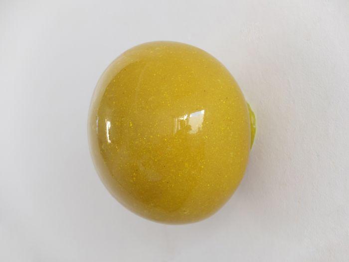 021-samuel-aligand-irma_plastique-et-pigment-16cm-de-diamectre-2015-db0dda70a8a0bbd87dbe17e44578d6d7