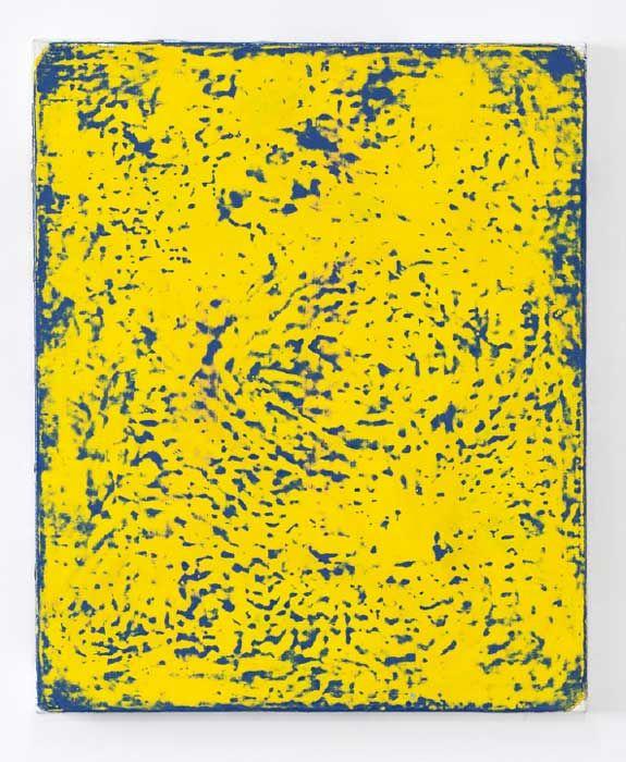 e.cheneau-128-bleu-jaune-46-x-38-2016-2017-076b66e1bc6034743381156fd232b408