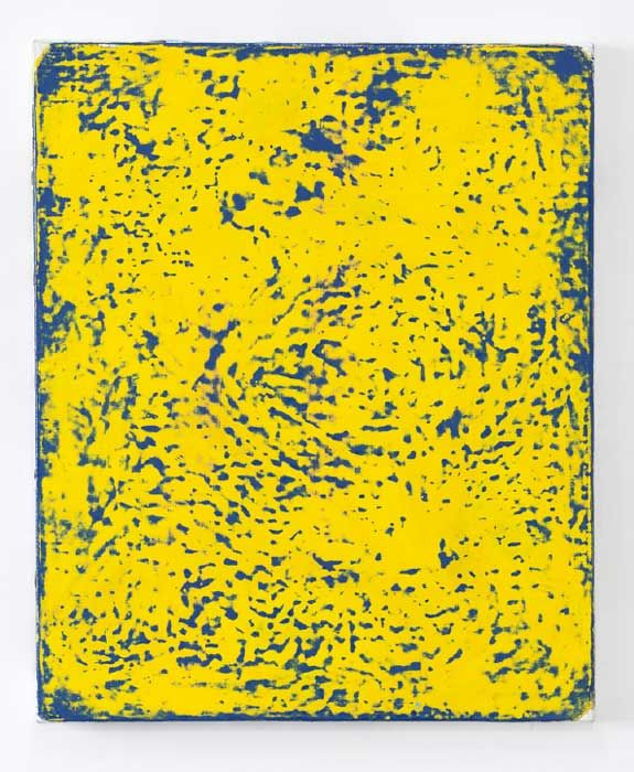 e.cheneau-128-bleu-jaune-46-x-38-2016-2017-75c86adc49432a85bd98751eed917e49